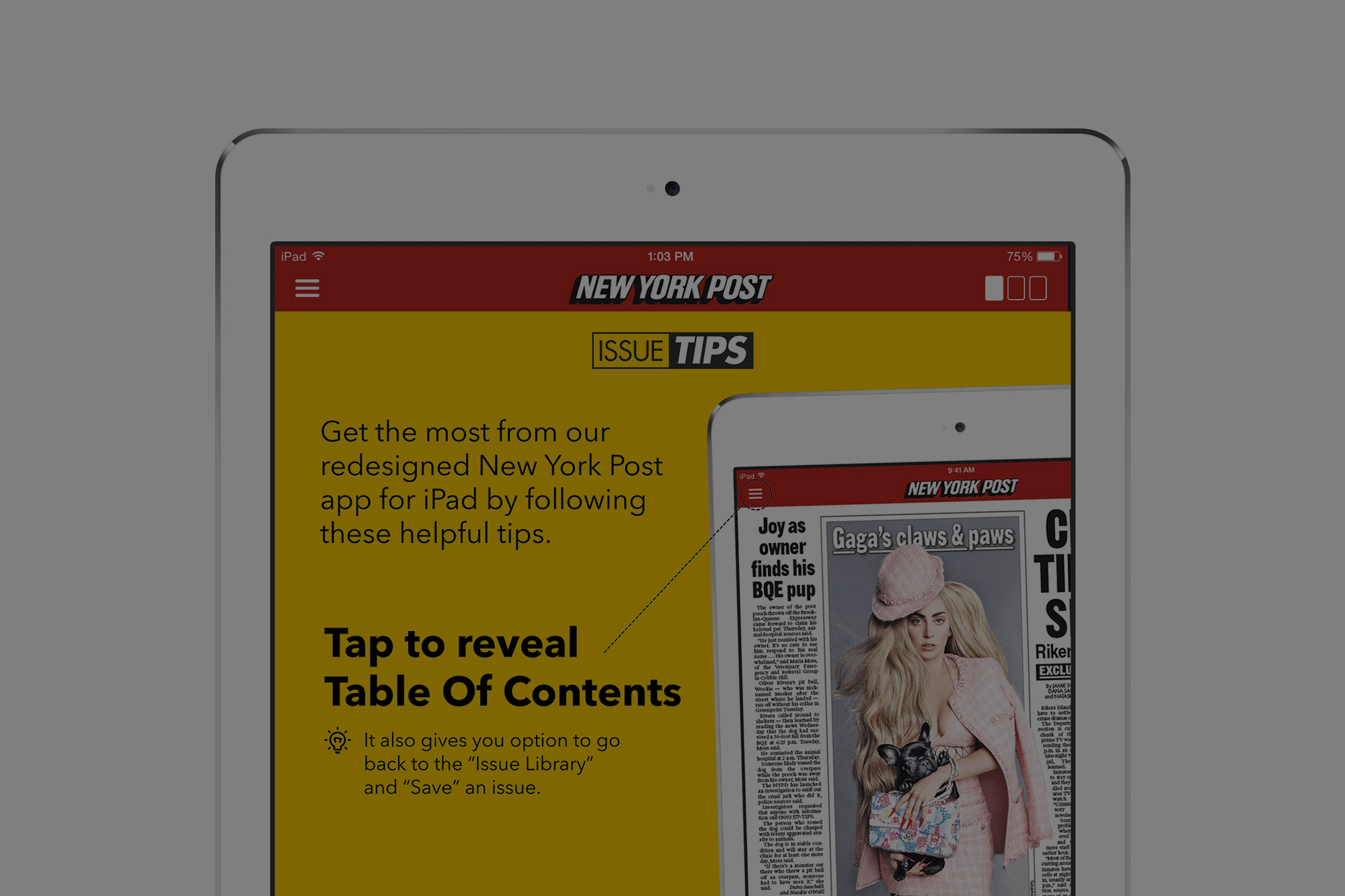 iPad App help website and promo for New York Post